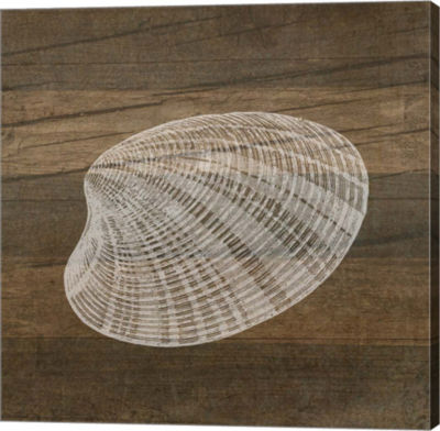 Metaverse Art Rustic Shell - White Gallery Wrapped Canvas Wall Art