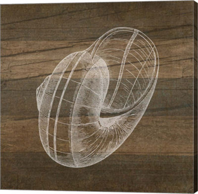 Metaverse Art Rustic Nautilus - White Gallery Wrapped Canvas Wall Art