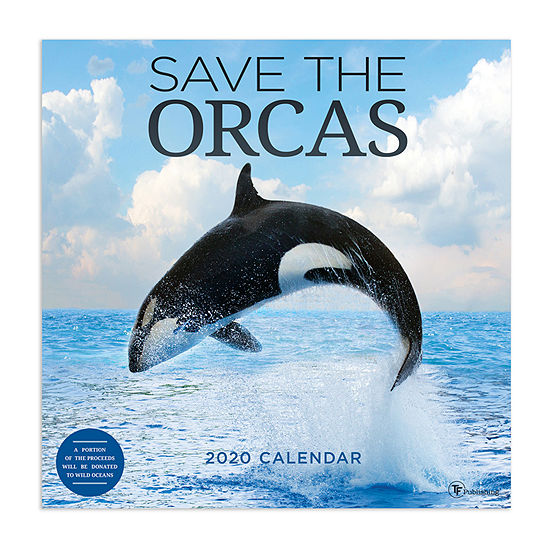 Tf Publishing 2020 Save The Orcas Wall Calendar