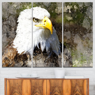 Designart Eagle Head With Textures Animal Canvas Art Print - 3 Panels