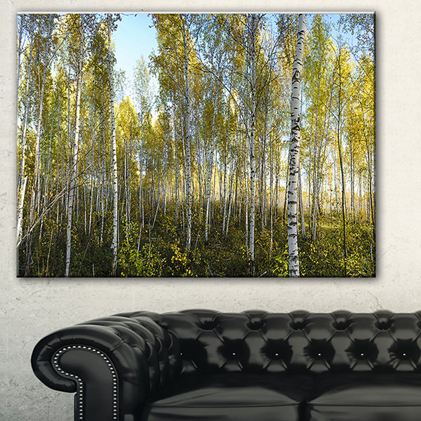 Design Art Green Autumn Trees Landscape Photography Canvas Print