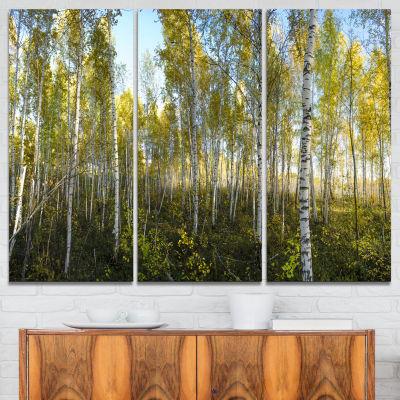 Designart Green Autumn Trees Landscape PhotographyCanvas Print - 3 Panels