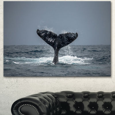 Designart Humpback Whale Tail Animal Wall Art