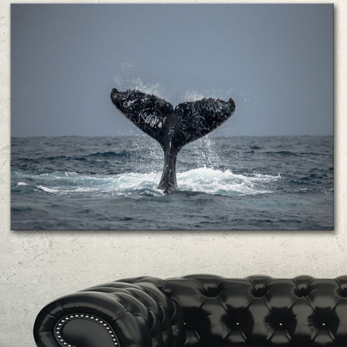 Design Art Humpback Whale Tail Animal Wall Art