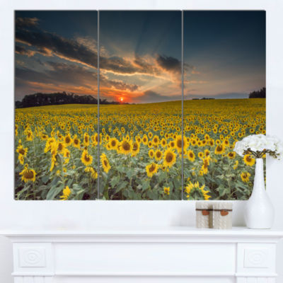 Designart Sunflower Sunset With Cloudy Sky Landscape Canvas Art - 3 Panels