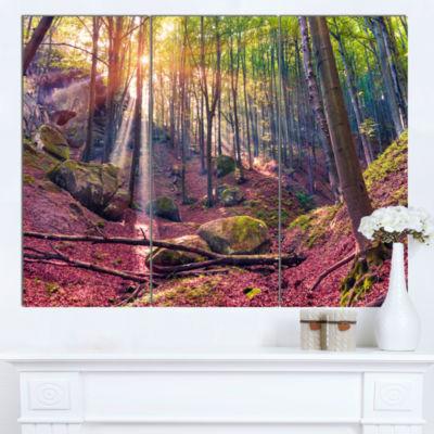 Designart Autumn Morning In Mystical Woods Landscape Canvas Art Print - 3 Panels