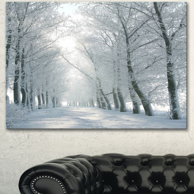 Designart Winter Road Backlit My Morning Sun Forest Canvas Art Print
