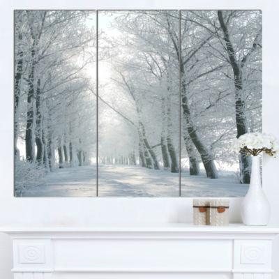 Designart Winter Road Backlit My Morning Sun Forest Canvas Art Print - 3 Panels