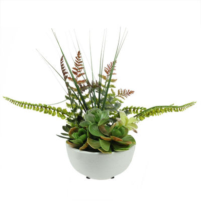 """11.5"""" Artificial Mixed Red and Green Succulent and Fern Plants in a White Crackle Finish Bowl Pot"""""""