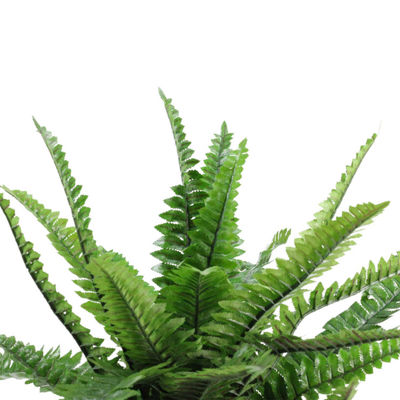 "18.5"" Potted Artificial Green Boston Fern Plant Spring Decoration"""
