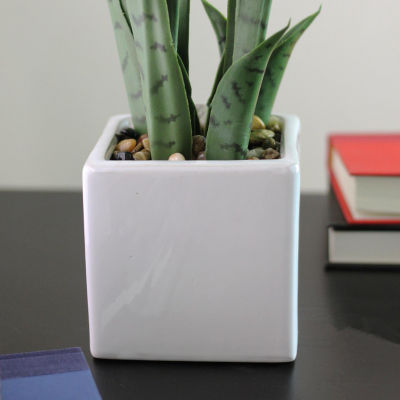 "21"" Artificial Succulent Plant in Decorative White Ceramic Square Pot"""
