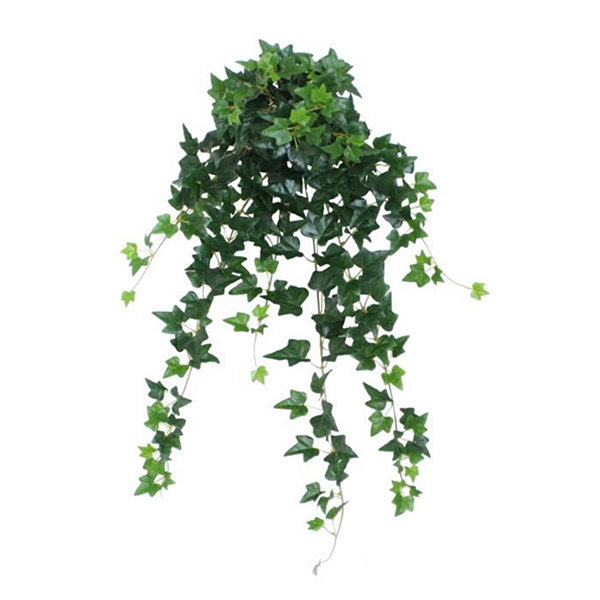 "23.75"" Decorative Garden-Style Green Ivy Spring Floral Hanging Bush"""