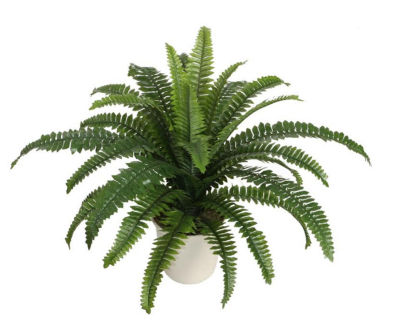 "24"" Potted Artificial Green Boston Fern in a Decorative Cream Pot"""