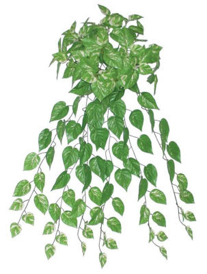 """34.75"""" Decorative Artificial Green and White Pothos Plant Spring Floral Bush"""""""
