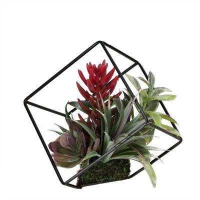 "7"" Artificial Succulents Arrangement in Decorative Offset Metal Wire Frame"""