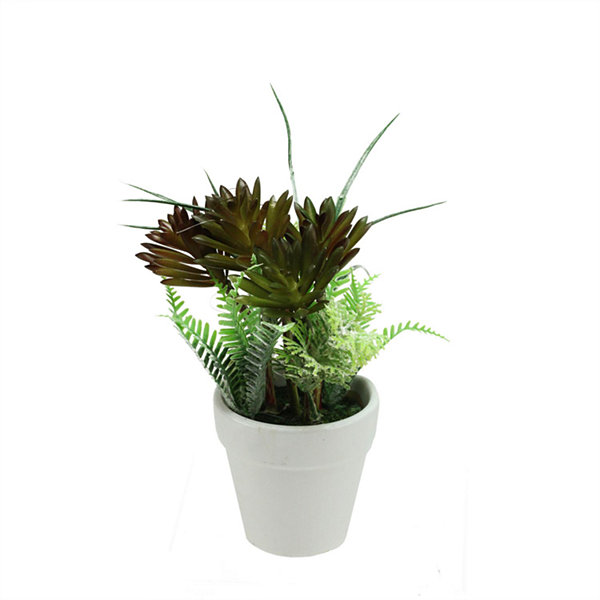 "7.5"" Artificial Green and Red Succulent and Fern Spring Decoration in a Round White Pot"""