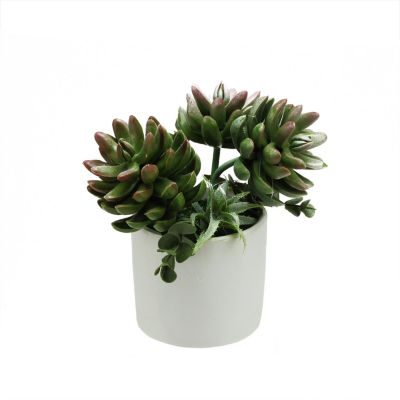"7.75"" Artificial Mixed Green and Red Succulent Plants in a Decorative White Pot"""