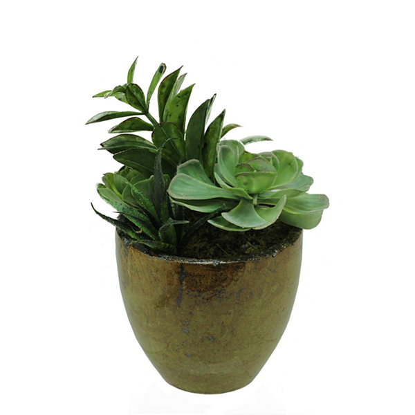 "8.5"" Artificial Mixed Green and Red Succulent Plants in a Decorative Brown and Black Pot"""