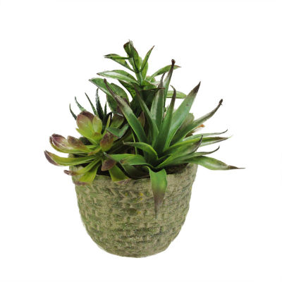 "8.5"" Decorative Artificial Mixed Succulent Plant Arrangement in a Brown and Green Basket Weave Pot"""