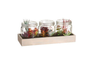 """Set of 3 Artificial Mixed Succulent Plants in Glass Jars on Wooden Display Tray 9.25"""""""