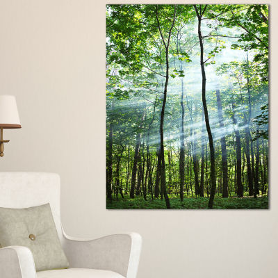 Designart Green Sunny Forest Landscape Photography Canvas Art Print