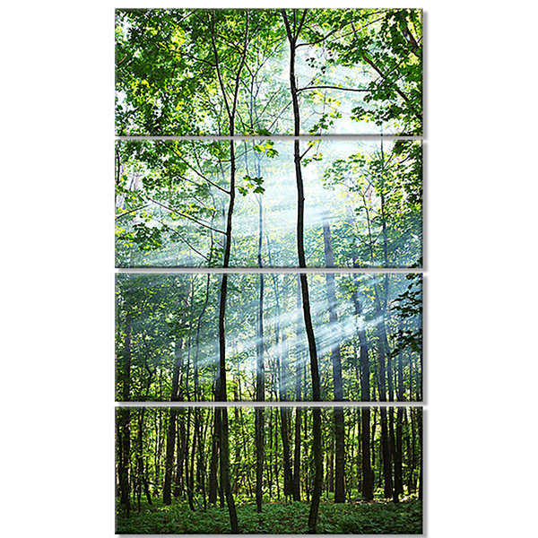 Designart Green Sunny Forest Landscape PhotographyCanvas Art Print - 4 Panels