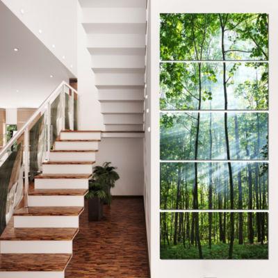 Designart Green Sunny Forest Landscape Photography Canvas Art Print - 5 Panels