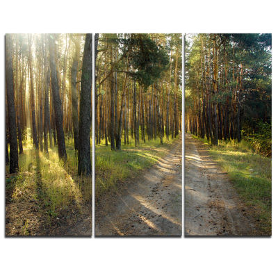 Designart Road Through Green Pine Forest LandscapePhotography Canvas Print - 3 Panels