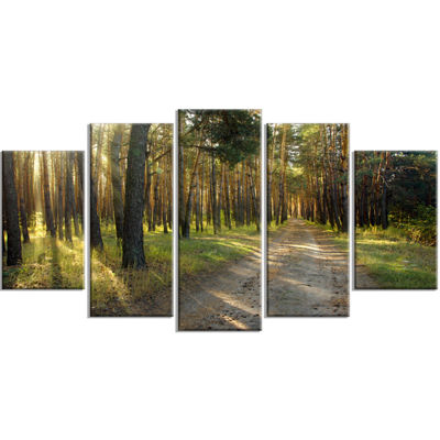 Designart Road Through Green Pine Forest LandscapePhotography Canvas Print   5 Panels