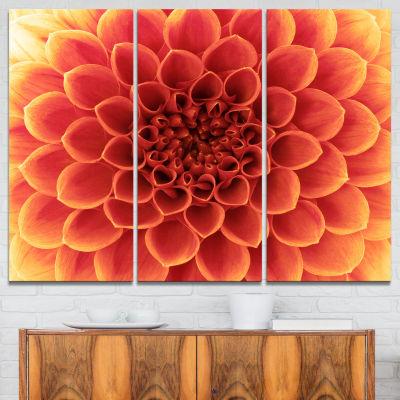 Designart Brown Flower With Dense Petals Photo Canvas Print - 3 Panels