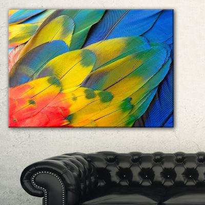Designart Scarlet Macaw Feathers Photography Canvas Art Print