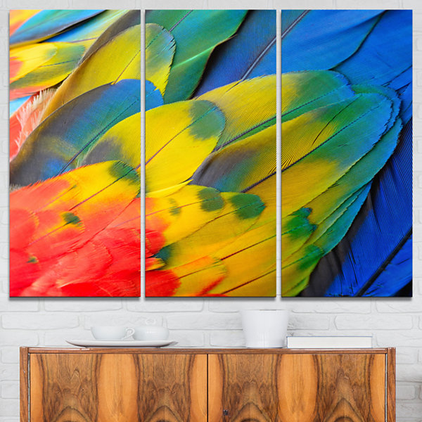 Designart Scarlet Macaw Feathers Photography Canvas Art Print - 3 Panels