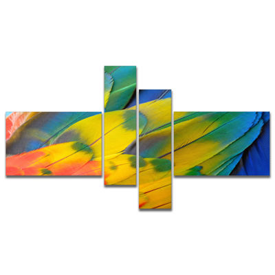 Designart Scarlet Macaw Feathers Photography Canvas Art Print   4 Panels