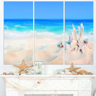 Designart Seashells On Seashore Beach PhotographyCanvas Art Print - 3 Panels