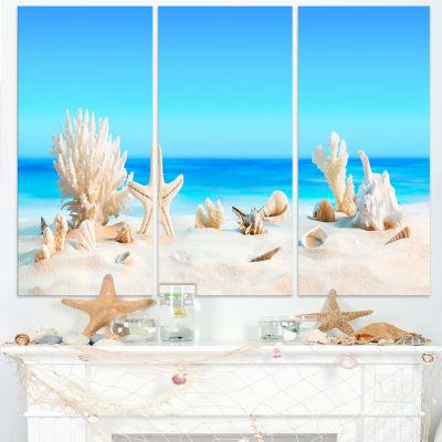 Designart Seashells On Tropical Beach Seashore Photo Canvas Print - 3 Panels