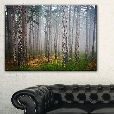 Designart Dense Misty Forest Landscape PhotographyCanvas Art Print