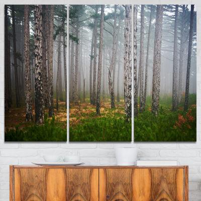 Designart Dense Misty Forest Landscape PhotographyCanvas Art Print - 3 Panels