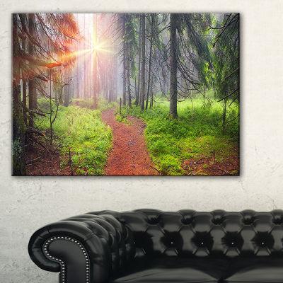 Designart Autumn Forest At Dawn Landscape Photography Canvas Art Print