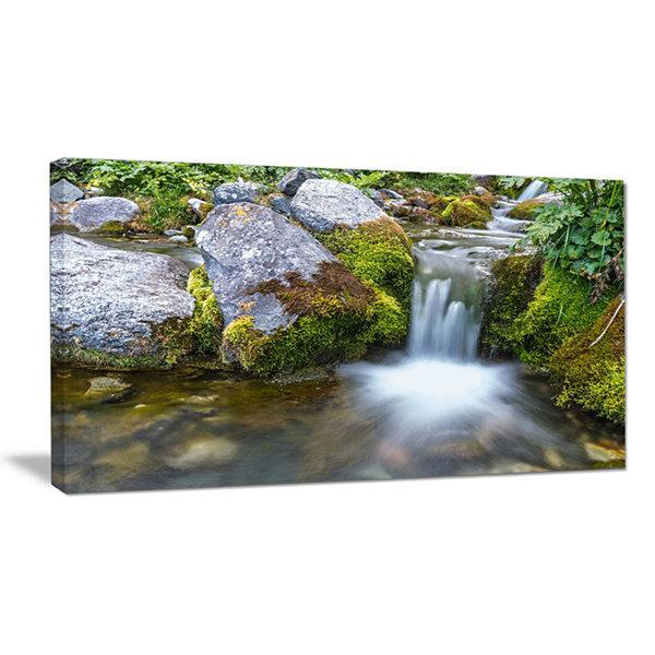 Designart Summer Water Stream Landscape Photography Canvas Art Print