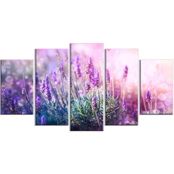 Designart Growing And Blooming Lavender (373) Floral Canvas Art Print - 5 Panels