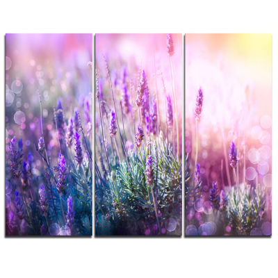 Designart Growing And Blooming Lavender Floral Canvas Art Print - 3 Panels
