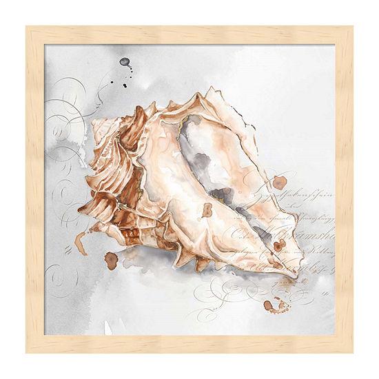 Metaverse Art Blush Shell Iii Framed Beach + Nautical Print
