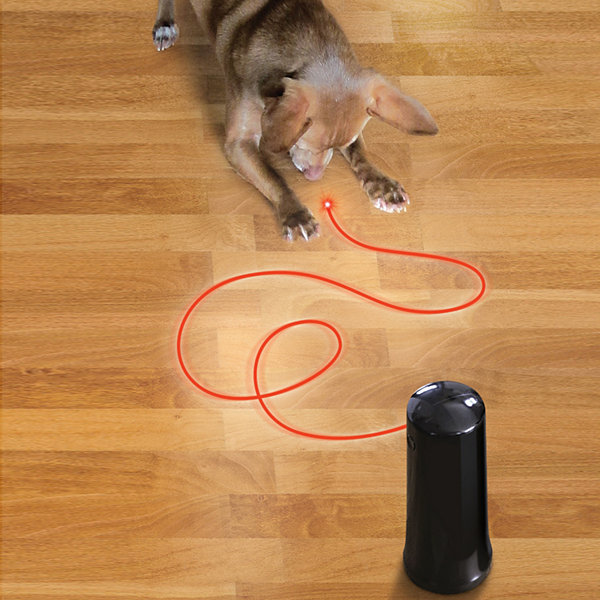 Animal Planet™ Auto-Motion Interactive Laser Pet Toy
