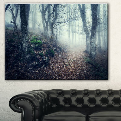 Designart Old Style Path In Forest Landscape Photography Canvas Print