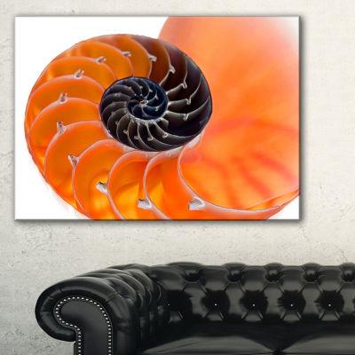 Designart Orange Nautilus Shell Abstract Canvas Art Print