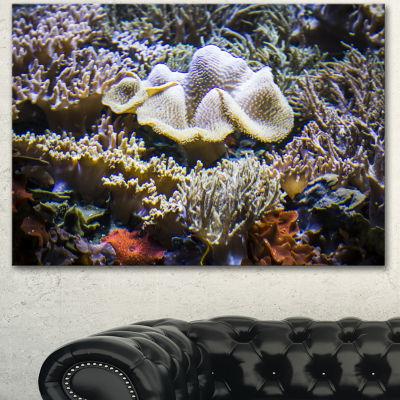 Designart Beautiful Seabed With Fish Large Landscape Canvas Art