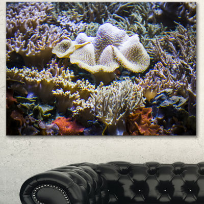 Designart Beautiful Seabed With Fish Large Landscape Canvas Art 3 Panels