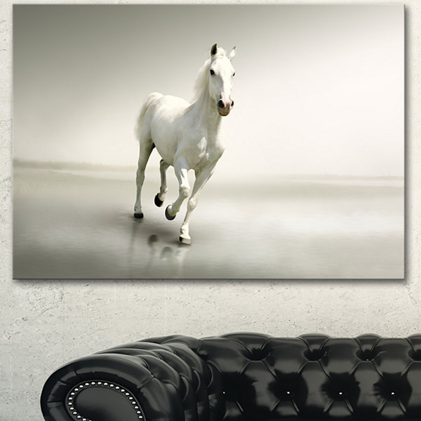 Designart Beautiful White Horse Running Animal Canvas Art Print