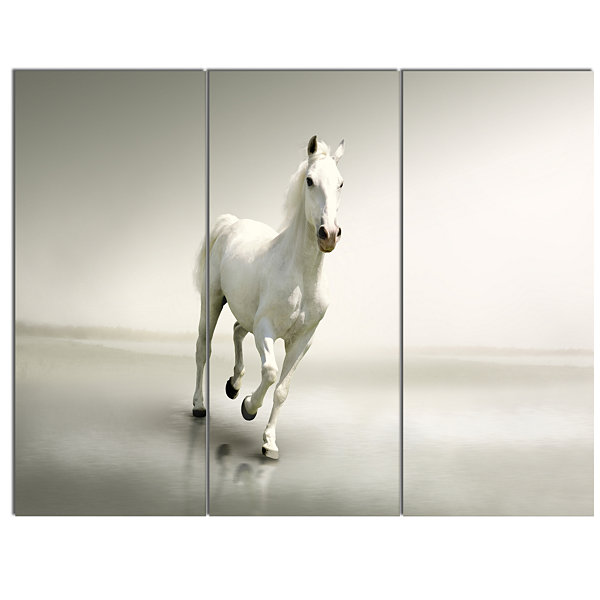 Designart Beautiful White Horse Running Animal Canvas Art Print 3 Panels