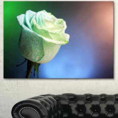 Designart Beautiful White Painted Rose Large Floral Canvas Art Print